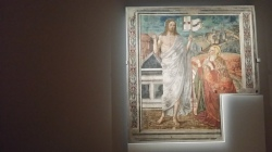 Focus on Italy: paintings of Siena.