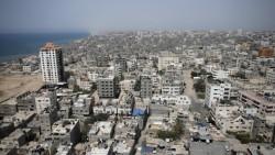 Egyptian court declares entirety of Hamas a terrorist organization #israel #hamas#egypt