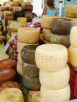 Slow Food on Powdered Milk in Cheese: Italian Ban Must Be Kept