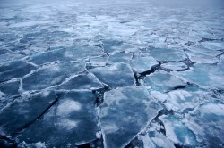 Activists criticise offshore drilling  #arctic #summit #environment