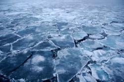 Activists criticise offshore drilling  #arctic #summit#environment