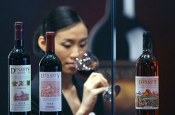 Chinese wines for the first time at Vinitaly 2016 #wine #vinitaly#china