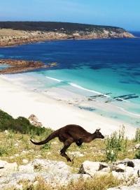 Australia: welcome toisland