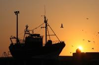 New four-year EU-Mauritania fisheriesdeal