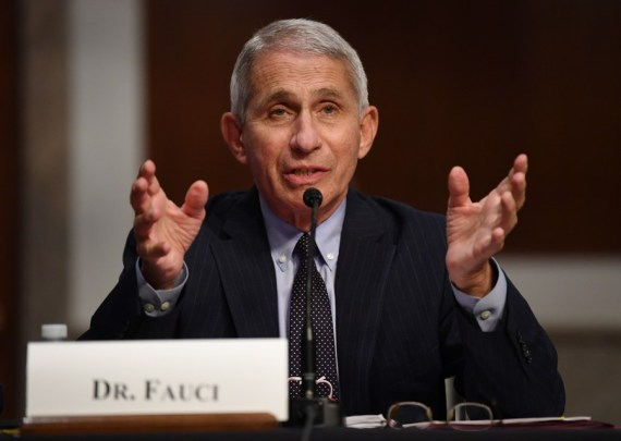 "Fauci ""cautiously optimistic"" about safe, effective COVID-19 vaccine in late fall, early winter"