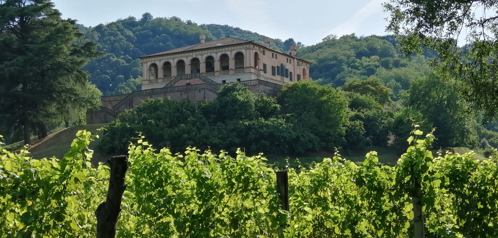 Villa dei Vescovi: The Renaissance on the Euganean Hills